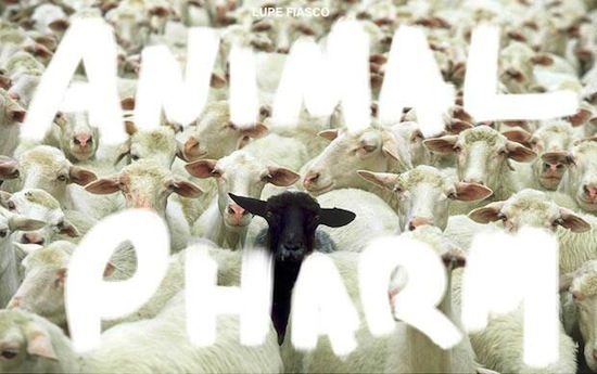 animal pharm-cover