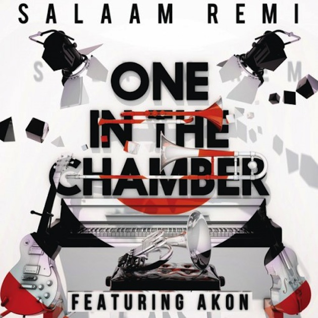 one-in-the-chamber-cover