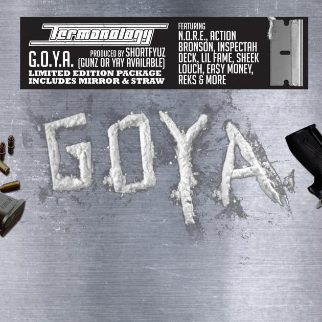 termanology-goya