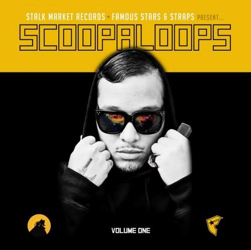 scoopaloop
